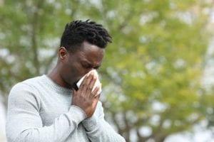 sneezing from allergies